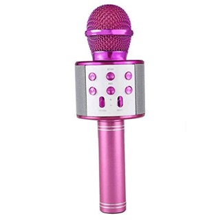 PINZY Wireless Microphone & HIFI Speaker WS858