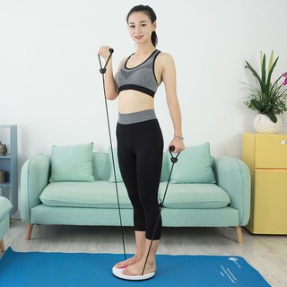 Techdoo Jogging Magnetic Trimmer Body Plate With Hand Holder Alat Pelangsing Pinggang TPM02