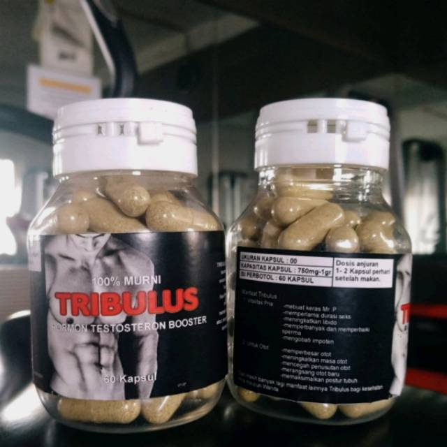 Wellness Tribulus Stack - Suplemen Stamina Pria - 30 Kapsul - 69021 | Shopee Indonesia