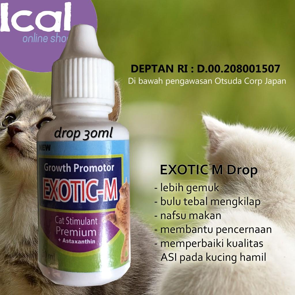 Vitamin Kucing Exotic M Drop Baik Untuk Kitten Dan Kucing Hamil Shopee Indonesia