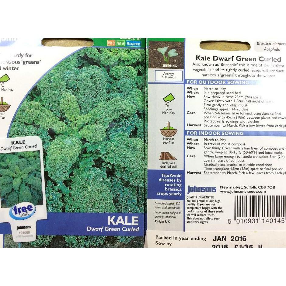 Benih Kale Dwarf Green Curled Shopee Indonesia Bibit Red Russian Haira Seed