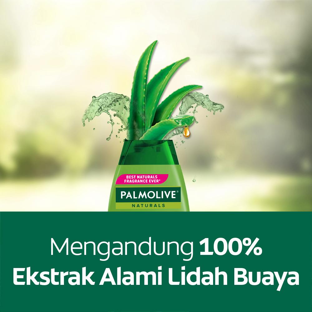 Palmolive Naturals Shampoo & Conditioner Ultra Smooth 180ml - Shampo Kondisioner (4pcs)-3