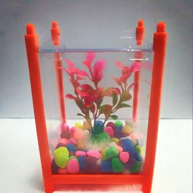 Paket Aquarium Mini Cupang Akuarium Aquarium Mini Akuarium Kecil Shopee Indonesia