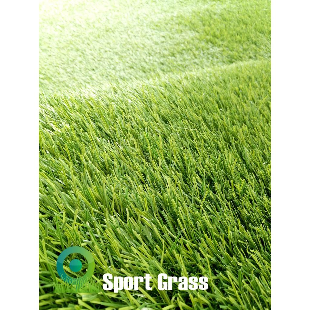 Biji Rumput Scotts Turf Builder Bermuda Grass Shopee Indonesia