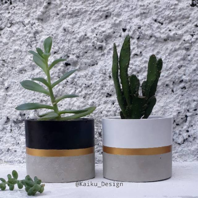 Pot Kaktus Pot Kaktus Concrete Concrete Planter Pot Kaktus