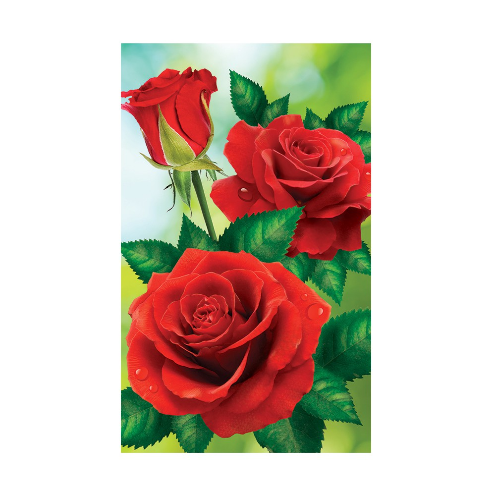 Diy Lukisan Diamond 5d Dengan Gambar Bunga Mawar Merah Untuk