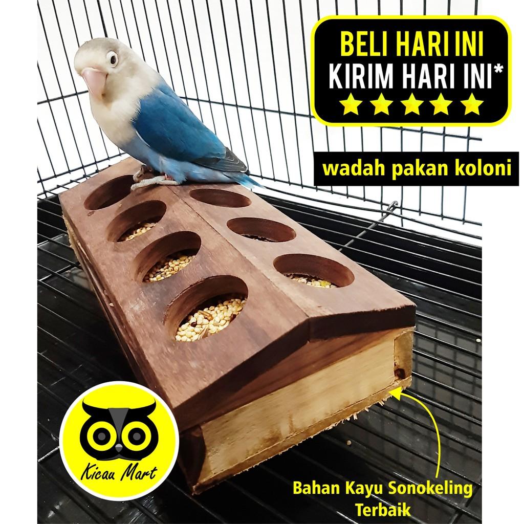 Wadah Pakan Koloni Kotak Kayu Tempat Makan Burung Lovebird Ternak Anti Tumpah Sangkar Umbaran Wdhkln Shopee Indonesia