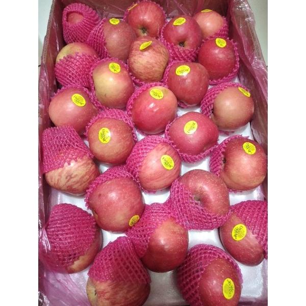 buah apel fuji/apel fuji glosir 1 dus 17 kg