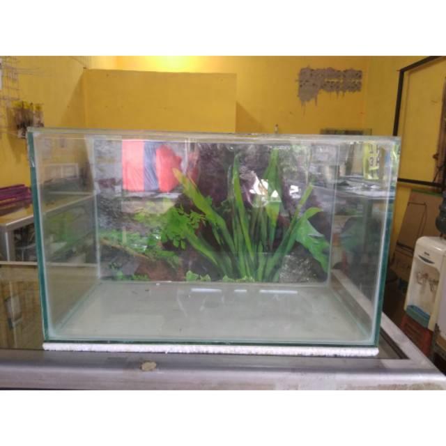 gojek aquarium 30x15x20