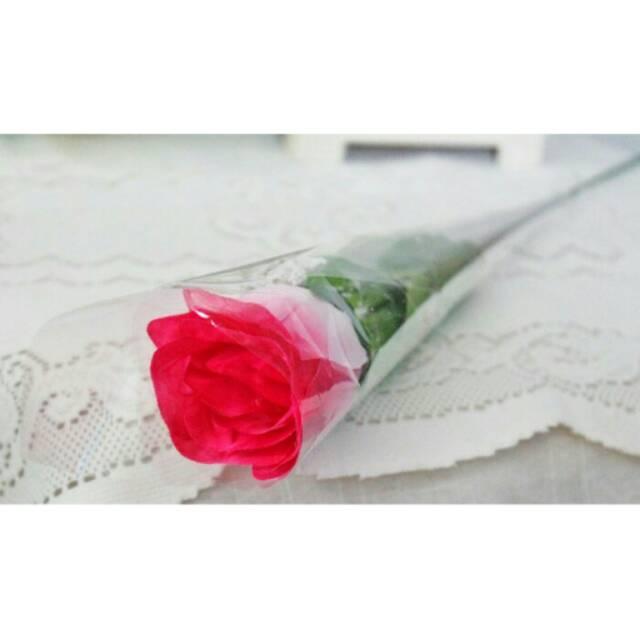 bunga tangkai - Temukan Harga dan Penawaran Lain-lain Online Terbaik -  Souvenir   Pesta Februari 2019  231d2ad08c