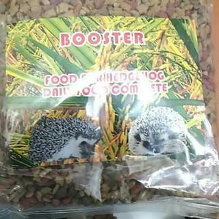 Makanan Landak Mini Booster Hedgehog Shopee Indonesia