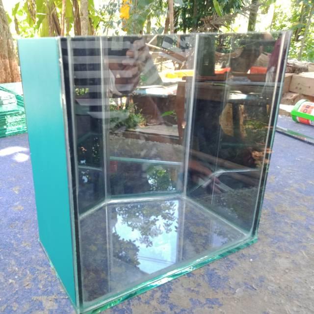 Soliter Aquarium Selfie Segi Lima Aquarium Cupang Aquarium Gupy Shopee Indonesia