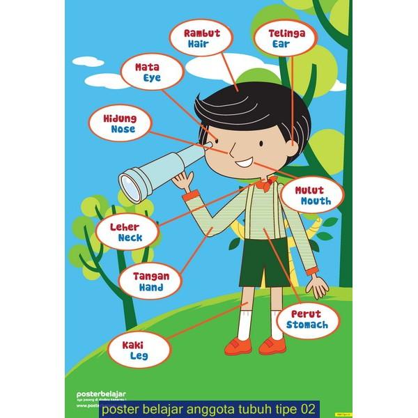Poster Belajar Anggota Tubuh Kegiatan Shopee Indonesia
