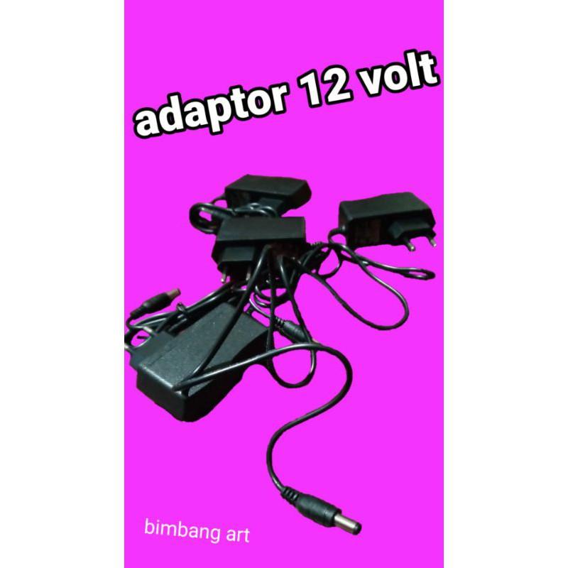 ADAPTOR 12 volt AC