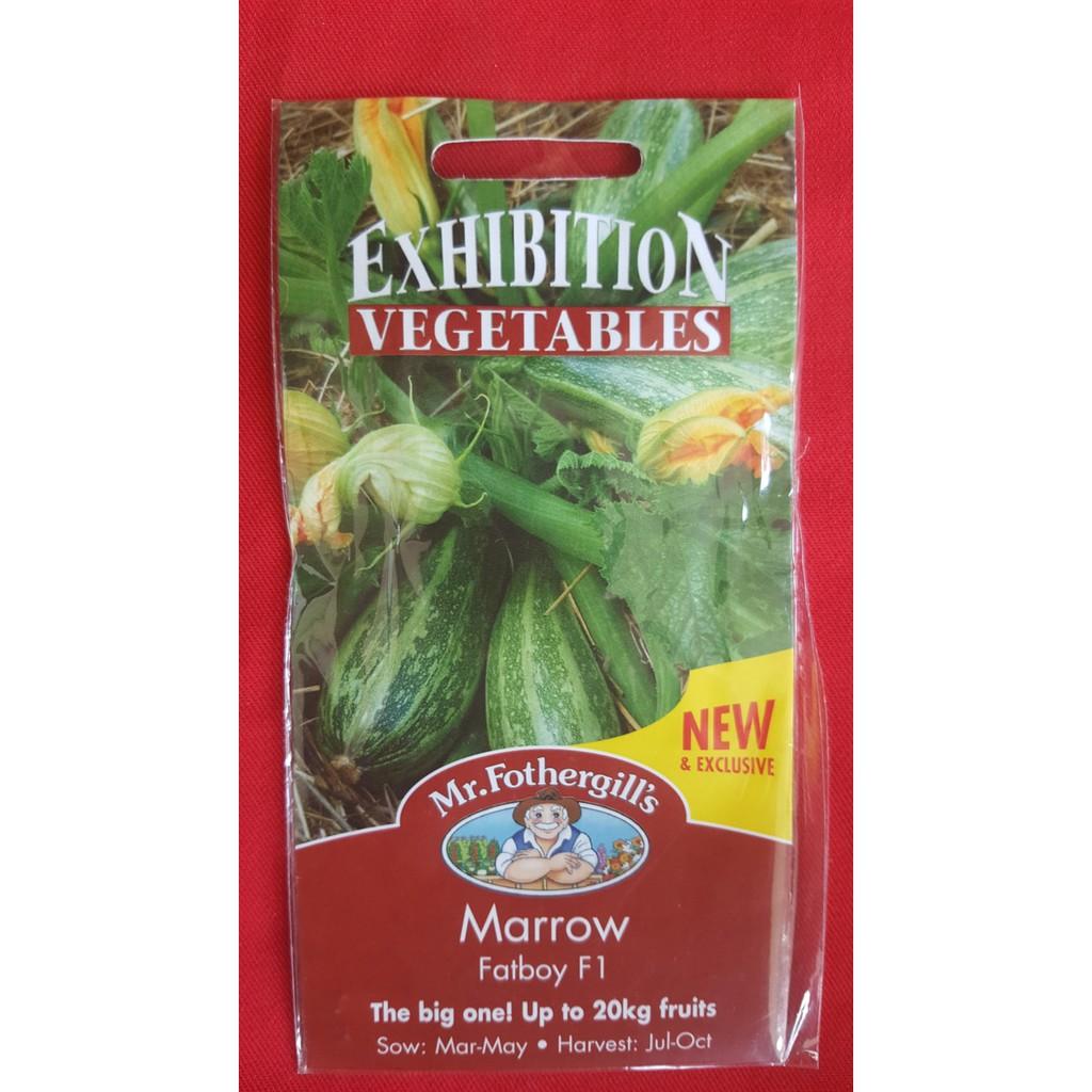 1 Pack 1250 Benih selada Lettuce Salad Bowl Red Mr. Fothergills bibit tanaman sayuran hidroponik | Shopee Indonesia