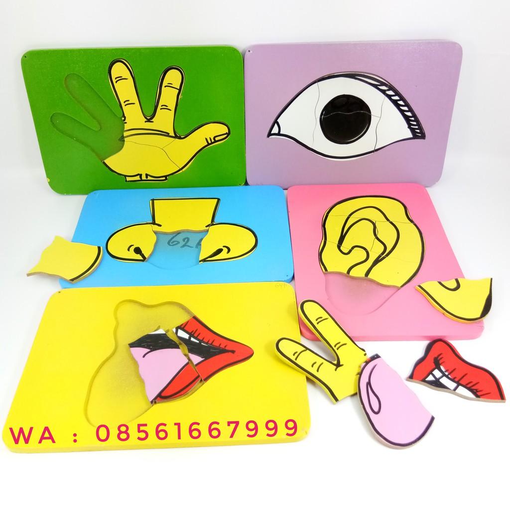 Mainan Edukasi Anak Mainan Anak Edukatif Mainan Kayu Alat Peraga Panca Indra Shopee Indonesia