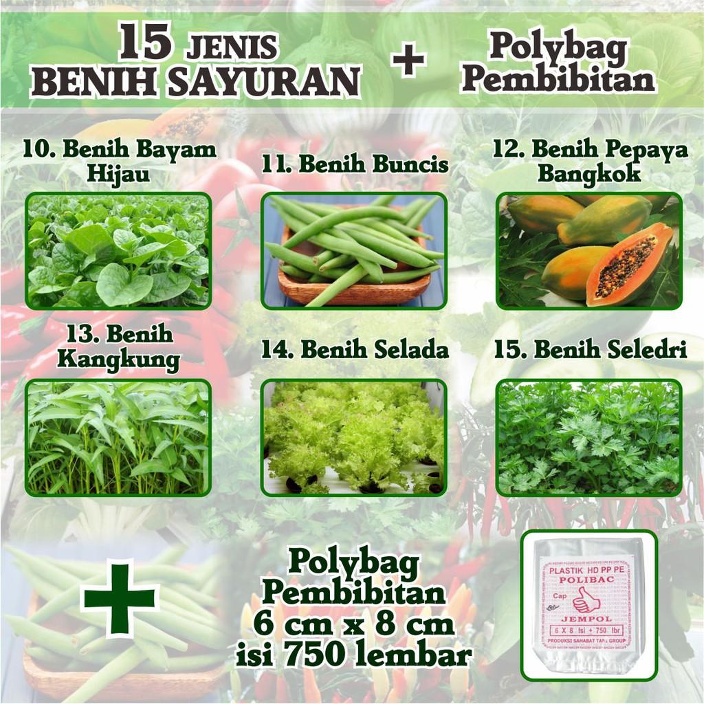 1 Pack 300 Benih Herbal Basil Thai Mr. Fothergills Bibit Tanaman OBAT / sayuran HERB | Shopee Indonesia