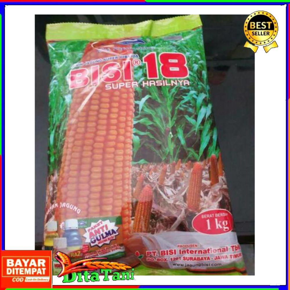 Bisa COD - Benih jagung hibrida Bisi 18 isi 1kg jagung bisi18 bibit jagung bisi 18