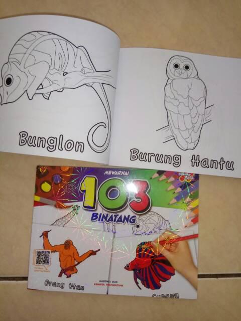 kumpulan gambar untuk belajar mewarnai gambar burung