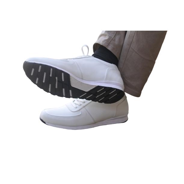 Sneakers Saggio Bapin White