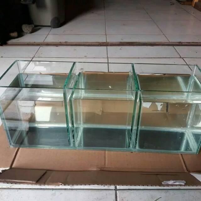 Aquarium Cupang Sekat 3 Shopee Indonesia
