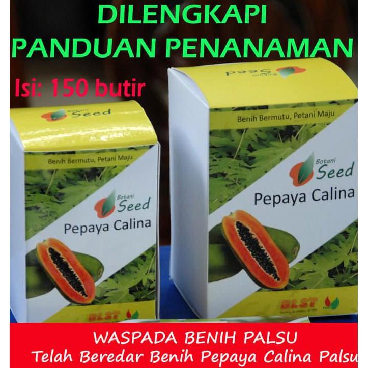 biji benih buah tin berisi 5 butir (VI683HLAA68A0ZANID-14073476). Source · Hot