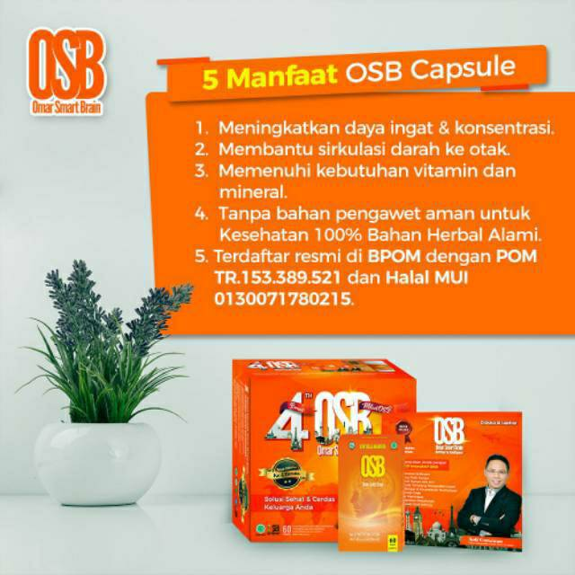 Herbal Vitamin Otak Kapsul OSB Omar Smart Brain Vitamin ...