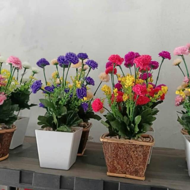 Bunga Anyelir Shopee Indonesia