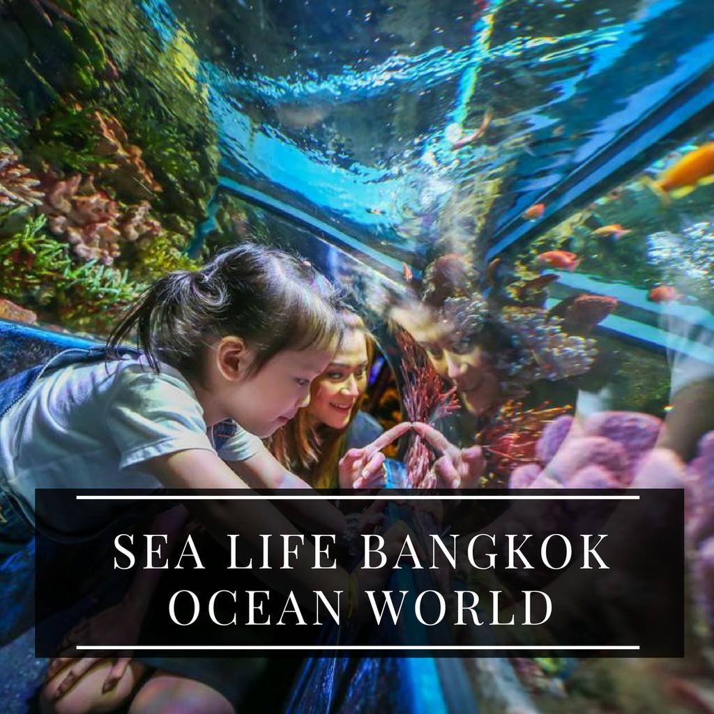 Tiket World Temukan Harga Dan Penawaran Online Terbaik November Masuk Dream 4d Adventure Bangkok Dewasa 2018 Shopee Indonesia