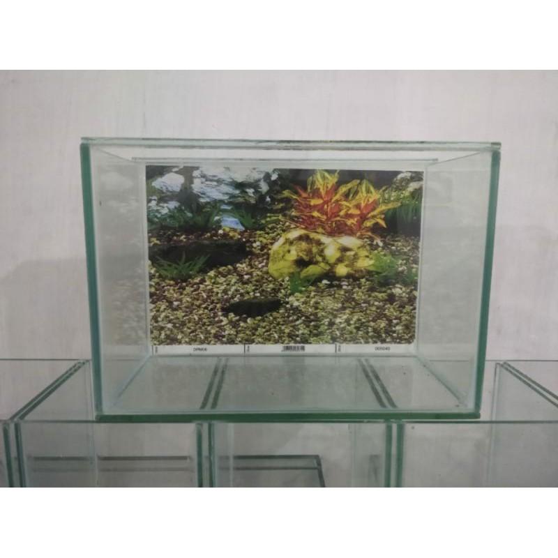 Aquarium 30x15x20 background