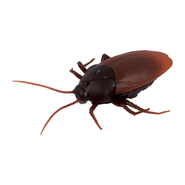 Hot Sale Top Infrared Remote Control Mock Fake Ants Cockroaches Spiders Rc Toy For Kids Dark Brown Shopee Indonesia