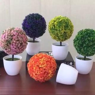 dekorasi ornamen tanaman hias bonsai bulat buatan mini