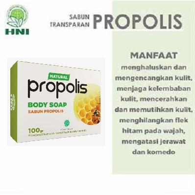 Hpai Hni Sabun Propolis Natural Herbal Wajah Kecantikan Kulit Gatal Panu Jerawat Kudis Koreng Muka Shopee Indonesia