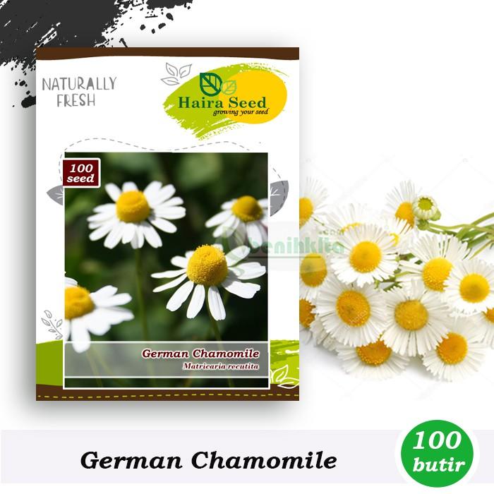 Benih Bibit Herba German Chamomile Haira Seed Shopee Indonesia