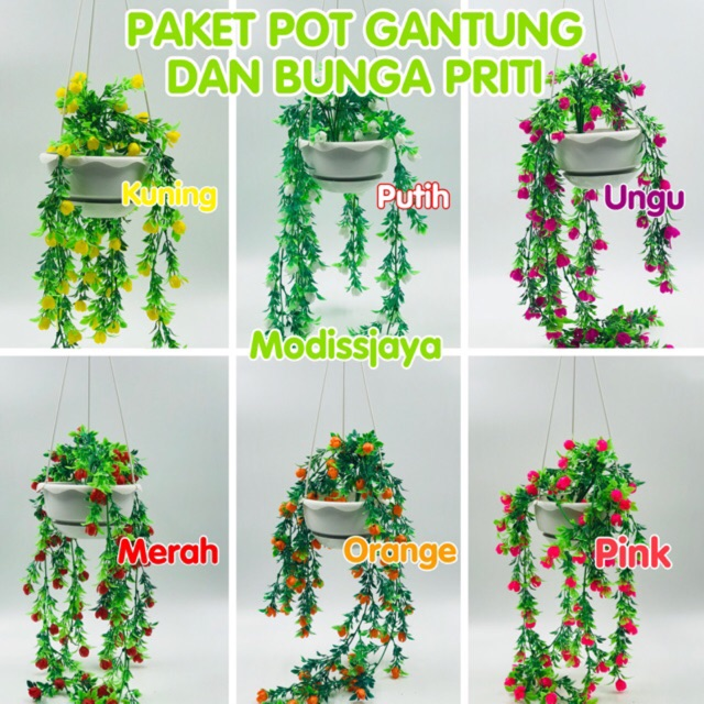 Paket Pot Gantung Bunga Priti Shopee Indonesia