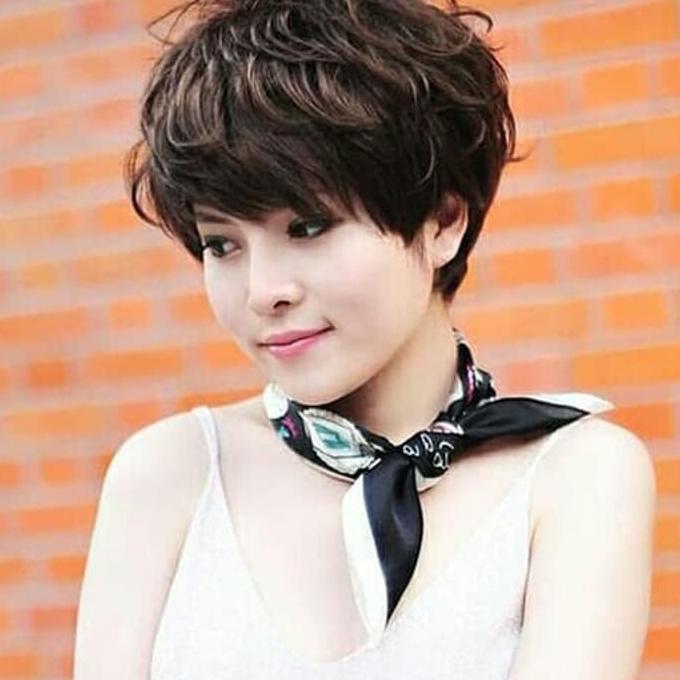 Disc Wig Wanita Model Rambut Pendek Ikal Shopee Indonesia