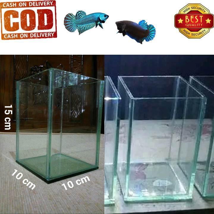 Akuarium Cupang Dan Ikan Hias Kecil Lainnya 100 Kaca Asli Shopee Indonesia