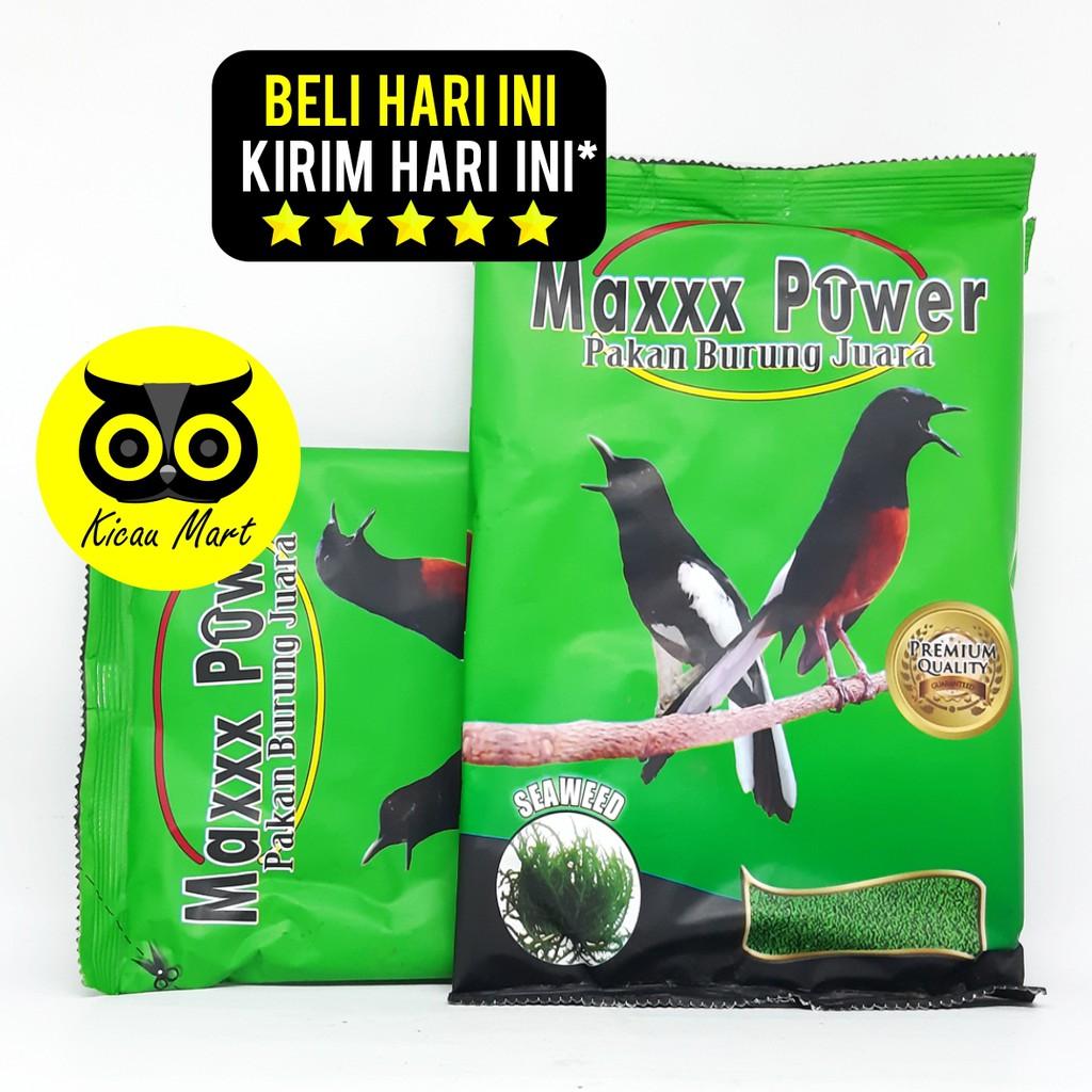 Pakan Makanan Harian Burung Murai Kacer Jalak Voer Pur Seaweed Maxxx Power Kemasan Plastik Pknbrmp3 Shopee Indonesia