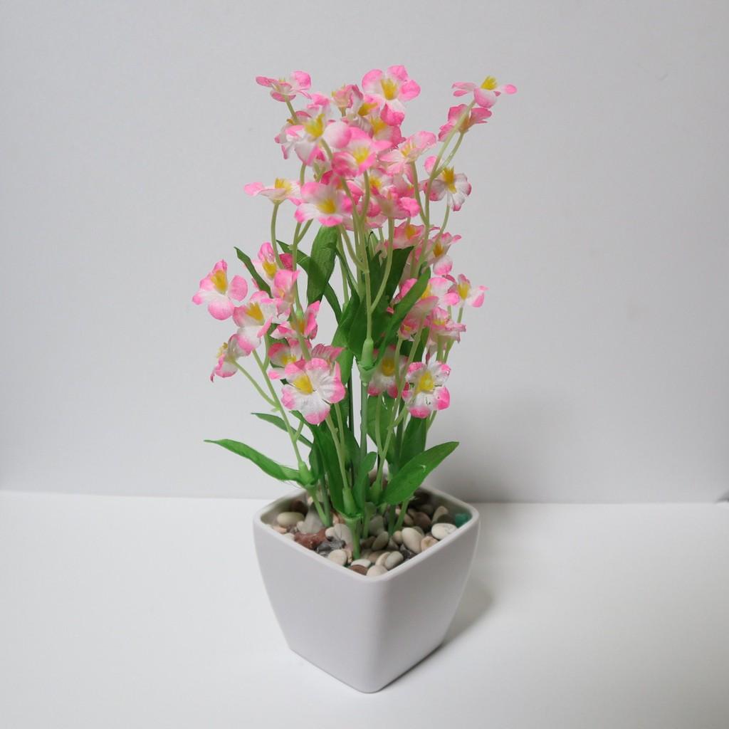 Vio Id Bunga Artificial Bunga Hias Plastik Tanaman Bunga Pajangan Mini Star Pot Kecil Shopee Indonesia