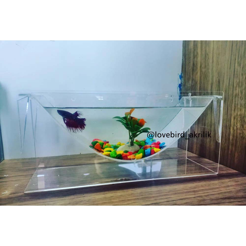 Aquarium Ikan Cupang Akrilik Acrylic Betta Fish Aquarium Akrilik Unik Aquarium Unik Betta Tank Shopee Indonesia