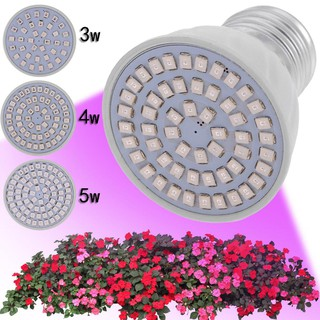E27 110v Led Plant Grow Light Lamp Growing Lights Bulbs For Flower Plant Shopee Indonesia