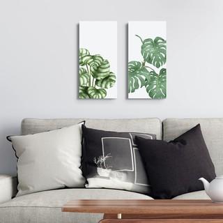 dekorasi rumah tanaman daun / home wall decor shabby chic