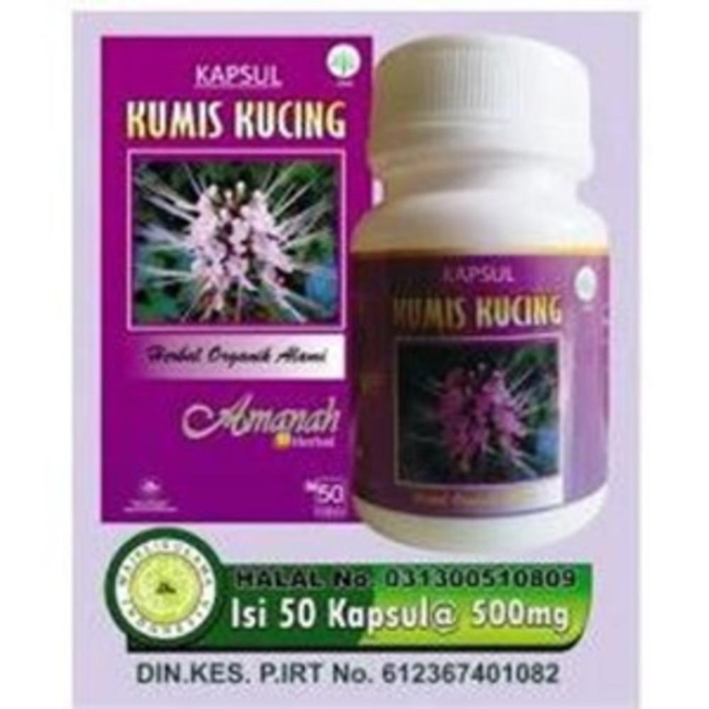 Kapsul Kumis Kucing Inayah Herbal Mengatasi Infeksi Saluran Green Coffee Extract Ashsihah Original Kencing Shopee Indonesia