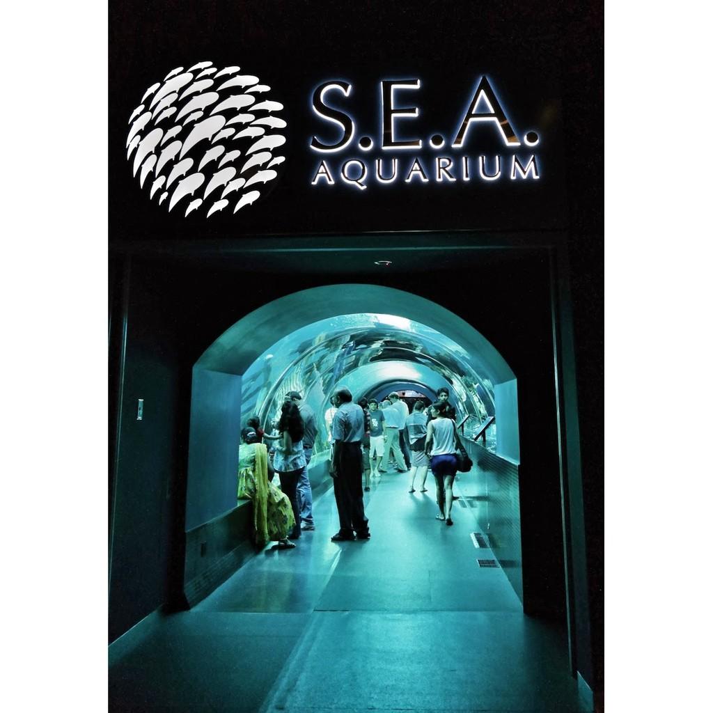 Tiket Sea Aquarium Singapore Dewasa Adult Shopee Indonesia