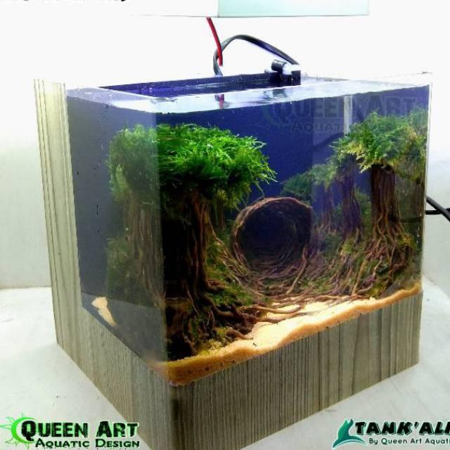 Tank Alit Aquarium Mini Akrilik Bending Untuk Aquascape Soliter Ikan Cupang Shopee Indonesia