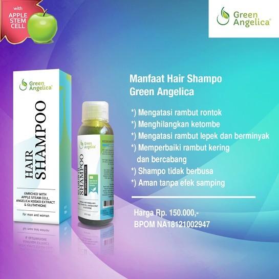 COMBO 3 GREEN ANGELICA MENGATASI RAMBUT RONTOKKETOMBE LEPEK HAIR SERUM  SHAMPO GREEN ANGELICA  e6856337bd