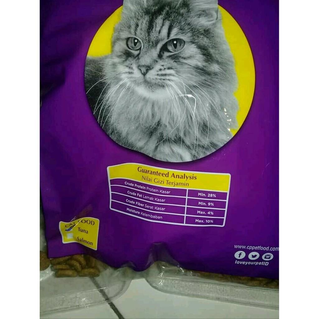 Makanan Kucing Untuk Semua Jenis Tipe Kucing Kucing Kampung