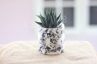 pot lukis + tanaman abstrak putih hitam minimalis kaktus
