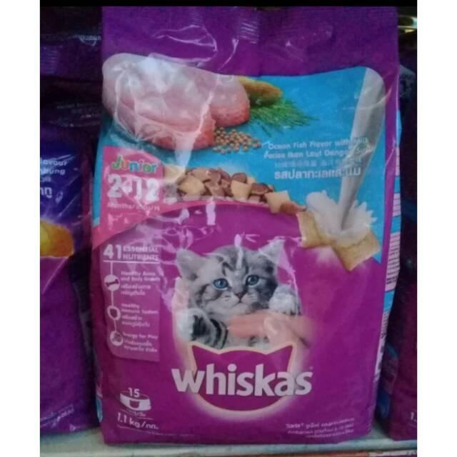 Whiskas Junior Ocean Fish With Milk 1 1 Kg Dry Cat Food Makanan