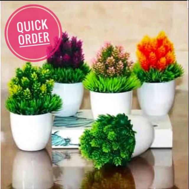 Pot Bunga Plastik Tanaman Hias Mungil Pot Dan Bunga Hiasan Meja Shopee Indonesia